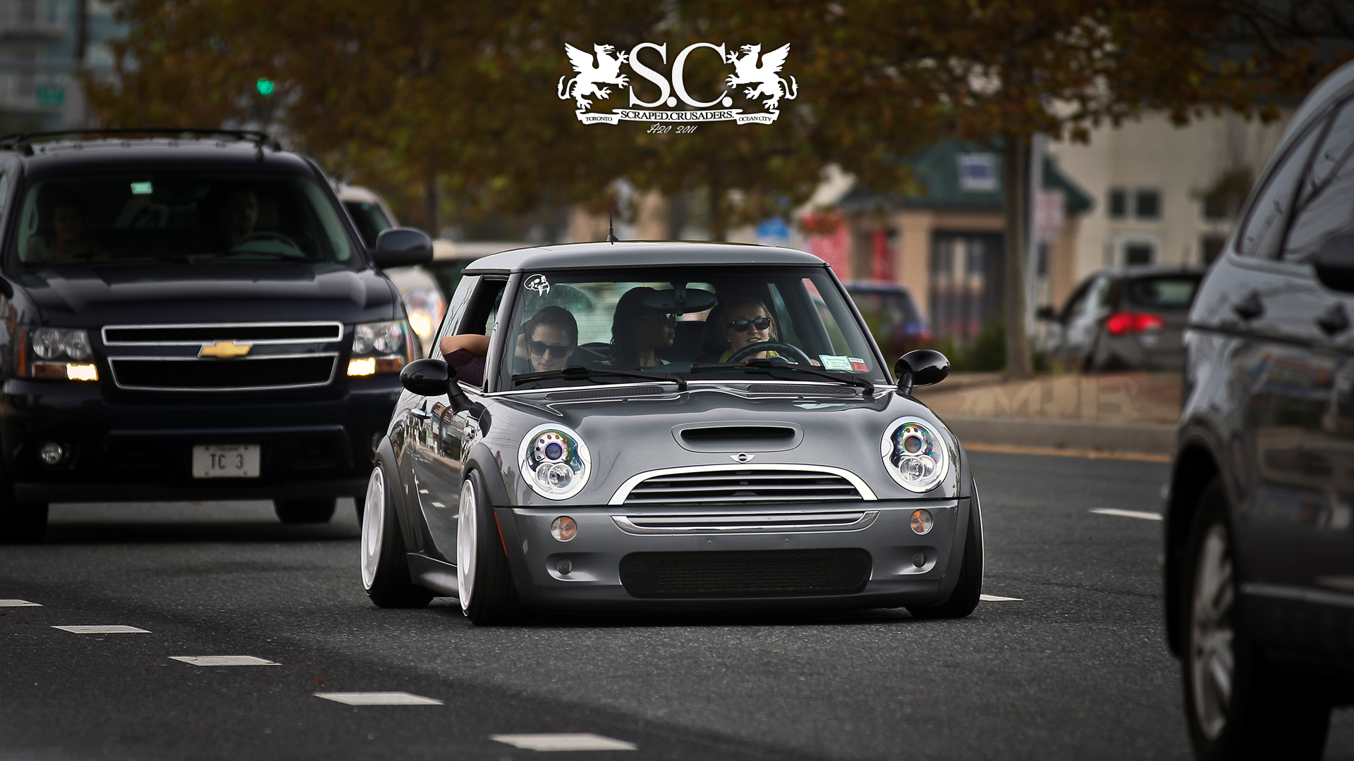 Pics Of Bagged Minis